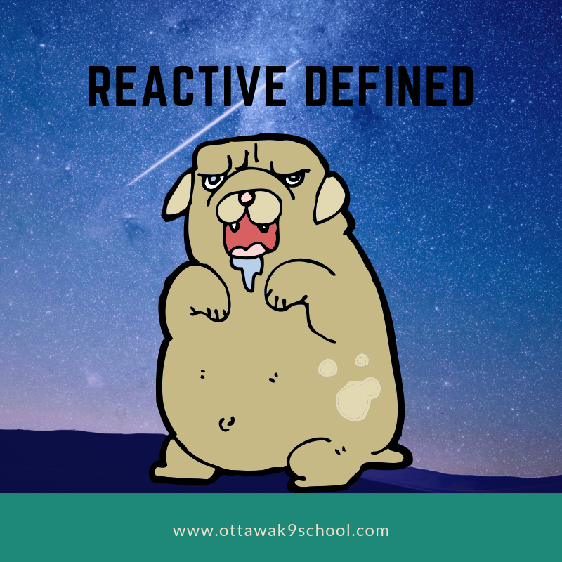 What does REACTIVE mean?